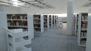 biblioteca-publica-5